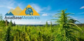 AsiaBaseMetals Inc. Offers Cannabis Sector Progress Update In EU