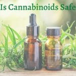 Are cannabis and cannabinoids safe