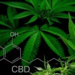 FTC Slaps Monetary Sanctions For False CBD Health Claims