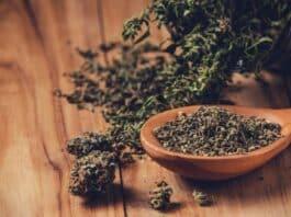 Illegal cannabis market