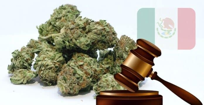 Mexican Senate Puts Legalization of Marijuana on Hold