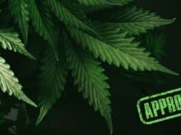 Rockland Gets Special Permit for Third Marijuana Dispensary